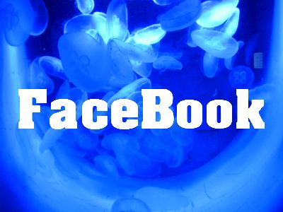 Coole Sprüche für FaceBook
