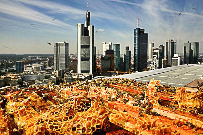 Außergewöhnliche Hotels Deutschland - Das Jumeirah in Frankfurt